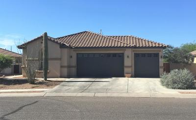Sahuarita Single Family Home Active Contingent: 49 W Calle La Bolita