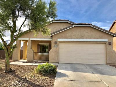 Sahuarita Single Family Home For Sale: 751 W Calle Valenciana