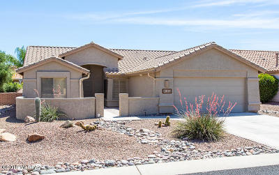 Single Family Home For Sale: 1823 E Desert Lark Pass