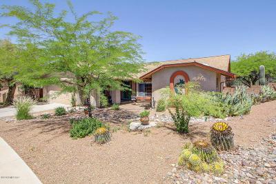 Tucson Single Family Home For Sale: 1416 W Canyon Shadows Lane