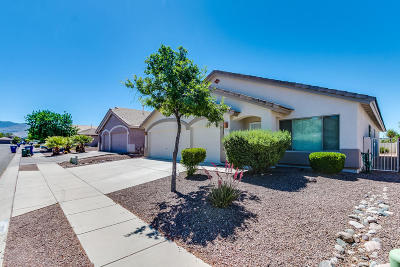 Tucson Single Family Home For Sale: 10206 E Mary Drive
