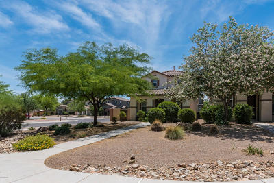 Sahuarita Single Family Home For Sale: 214 W Paseo Celestial