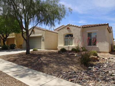 Single Family Home Sold: 255 E Via Puente De La Lluvia