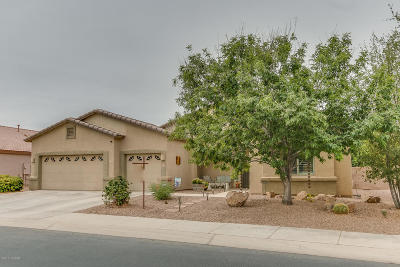 Marana Single Family Home For Sale: 12543 N Stone Ring Drive