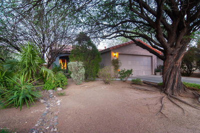 Tucson Single Family Home For Sale: 610 N Richey Boulevard