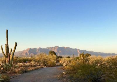 Tucson Single Family Home For Sale: 3755 N Camino De Oeste