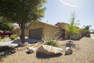 Green Valley Single Family Home Active Contingent: 18446 S Berrybrooke Place