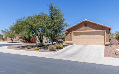 Marana Single Family Home Active Contingent: 12910 N Pocatella Drive