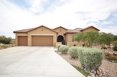Sahuarita Single Family Home For Sale: 1452 E Walker Springs Place