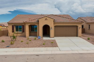 Marana Single Family Home For Sale: 13943 N Bright Angel Trail S