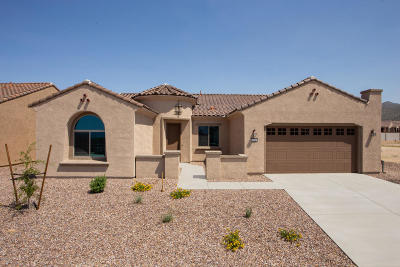 Marana Single Family Home For Sale: 13945 N Bright Angel Trail S
