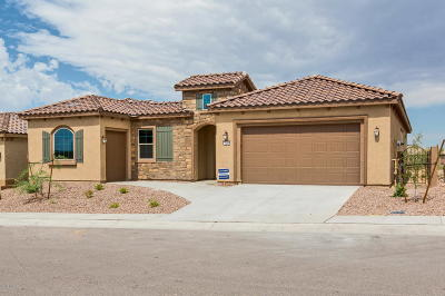 Marana Single Family Home For Sale: 7256 W River Trail S
