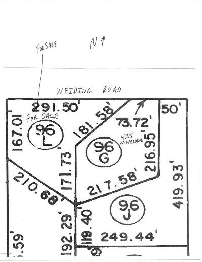 Residential Lots & Land For Sale: 4223 W Weiding Road