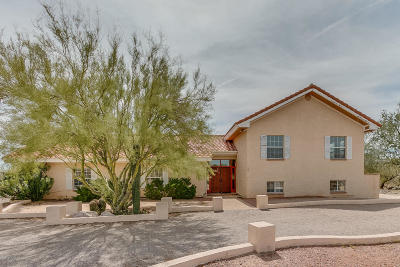 Tucson Single Family Home For Sale: 2601 W Lambert Lane