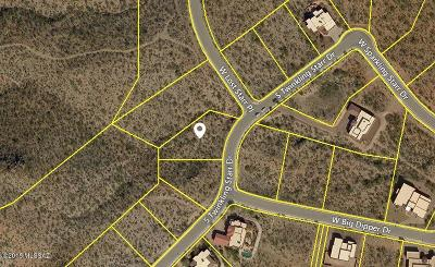 Tucson Residential Lots & Land For Sale: 1976 S Twinkling Starr Drive #7