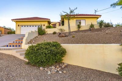 Rio Rico Single Family Home For Sale: 1519 Circulo Jacona