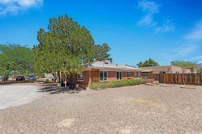 Tucson Single Family Home For Sale: 4545 E Seneca Street