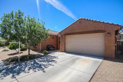 Sahuarita Single Family Home For Sale: 631 W Camino Sorpresa