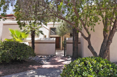 Tucson Single Family Home For Sale: 3681 N River Canyon Road