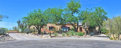 Tucson AZ Single Family Home For Sale: $690,000