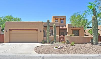 Tucson Single Family Home For Sale: 1565 E Ganymede Drive