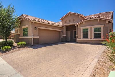 Marana Single Family Home Active Contingent: 8842 W Irongate Road