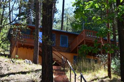 Mt. Lemmon Single Family Home For Sale: 12624 N Sabino Canyon