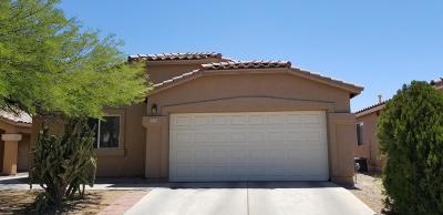 Tucson Single Family Home For Sale: 2628 N Splitwood Avenue