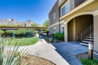Tucson Condo For Sale: 1500 E Pusch Wilderness Drive #4105