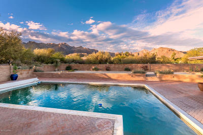 Tucson Single Family Home For Sale: 5965 N Sabino Shadow Lane