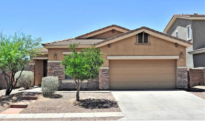 Tucson Single Family Home Active Contingent: 13725 N High Mountain View Place