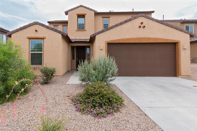 Vail Single Family Home Active Contingent: 725 S Desert Haven Road