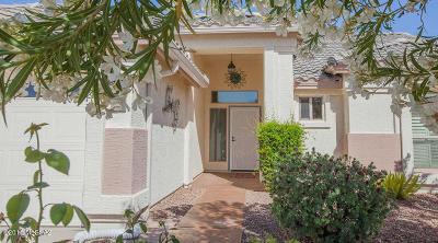 Green Valley  Single Family Home For Sale: 1011 N Desert Deer Pass