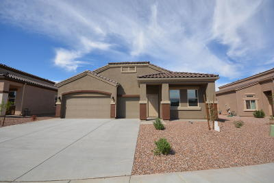 Marana Single Family Home For Sale: 9877 N Howling Wolf Road