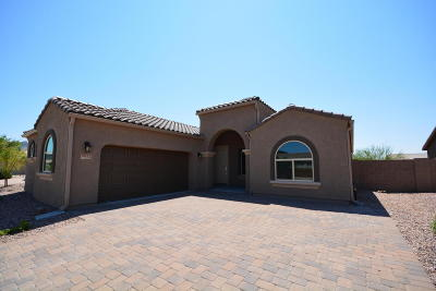 Marana Single Family Home For Sale: 9673 N Hebden Way