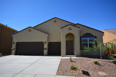 Marana Single Family Home For Sale: 9859 N Howling Wolf Road
