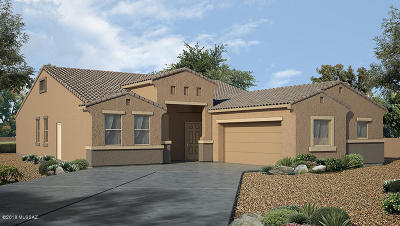 Marana Single Family Home For Sale: 9863 N Howling Wolf Road