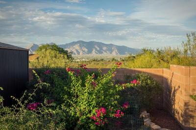 Tucson Single Family Home For Sale: 3695 W Driscol Lane