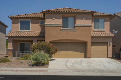Sahuarita Single Family Home Active Contingent: 14374 S Via Del Moro