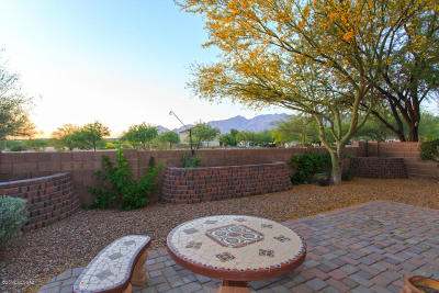Tucson Single Family Home For Sale: 4139 E Boulder Springs Way