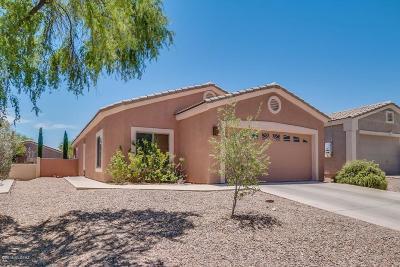 Single Family Home For Sale: 306 E Calle Puente Azul