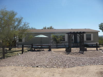 Tucson Single Family Home Active Contingent: 10279 N Coyote Lane