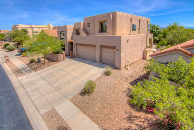 Single Family Home Active Contingent: 13810 E Red Hawk Sky Trail