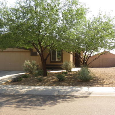 Marana Single Family Home Active Contingent: 14255 N Bronze Statue Avenue