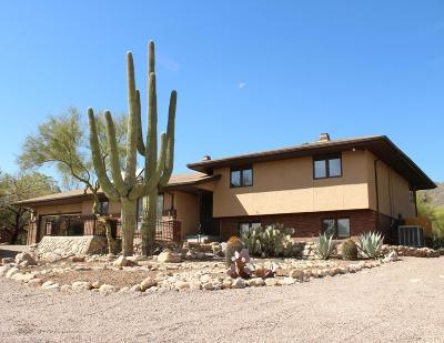 Tucson Single Family Home For Sale: 6119 N Sabino Shadow Lane
