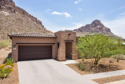 Tucson Single Family Home For Sale: 2863 S Smokin Pistol Way