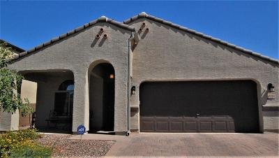 Marana Single Family Home For Sale: 8805 W Atlow Road