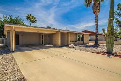Tucson Single Family Home For Sale: 7860 N Rasmussen Avenue