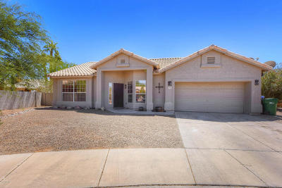 Tucson Single Family Home For Sale: 7157 W Rivulet Drive