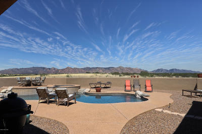 Cochise County Single Family Home For Sale: 5471 E Cochise Trail